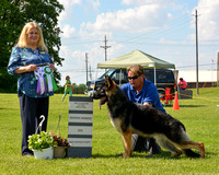 Reserve Winners Dog / Best Opposite Puppy